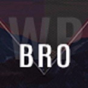 Brothers WordPress