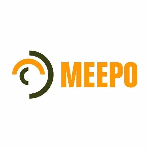 Meepo Electric Skate