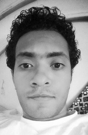 Mahmoud N. Kelany