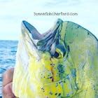 Boneafide Charters Florida Keys