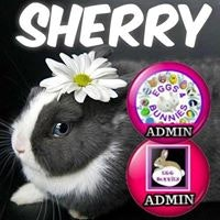 Sherry Hooper