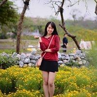 Dannie Nguyen