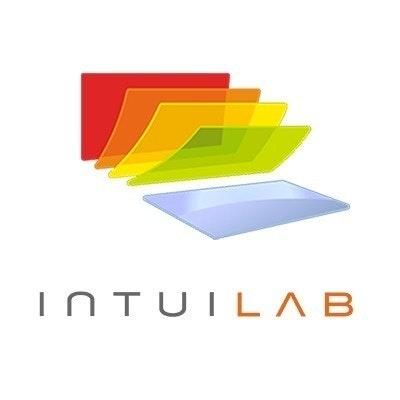 The IntuiLab Team
