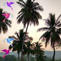 GokulrajNagu