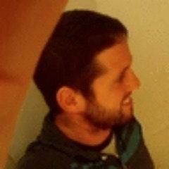 Brandon Walowitz