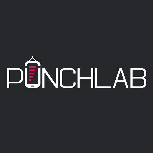 PunchLab Experience