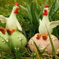 Өндөглөдөг Азарган Тахиа