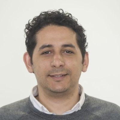 Mohamed Fergany