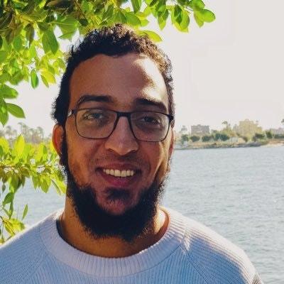 Ahmed Hosny Ibrahim