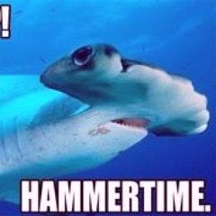 useful_shark