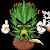 Power Cannabis seeds