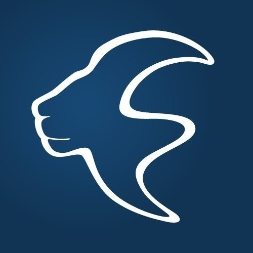 Lionsharp Solutions