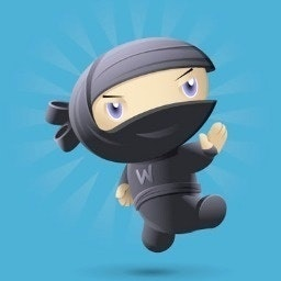 WooThemes Ninjas