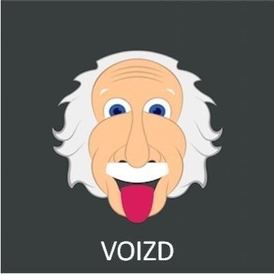 Voizd