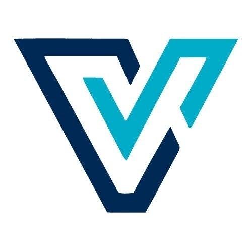 VectorScore