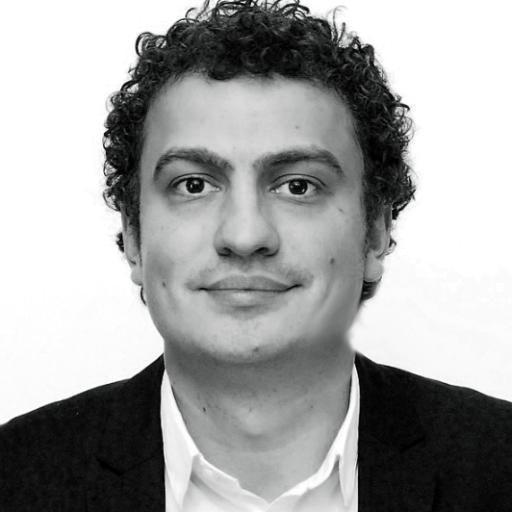 Ion Arventi