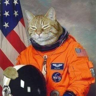 Astronaut Yaz