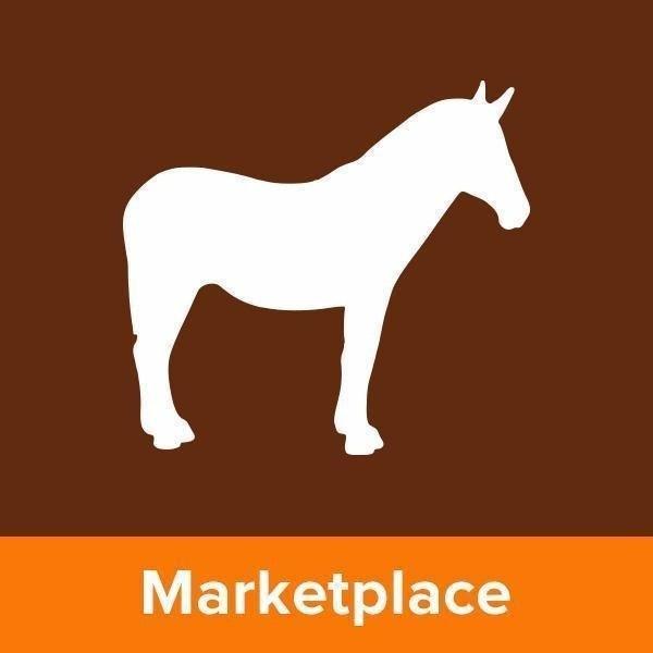 Sticker Mule Market