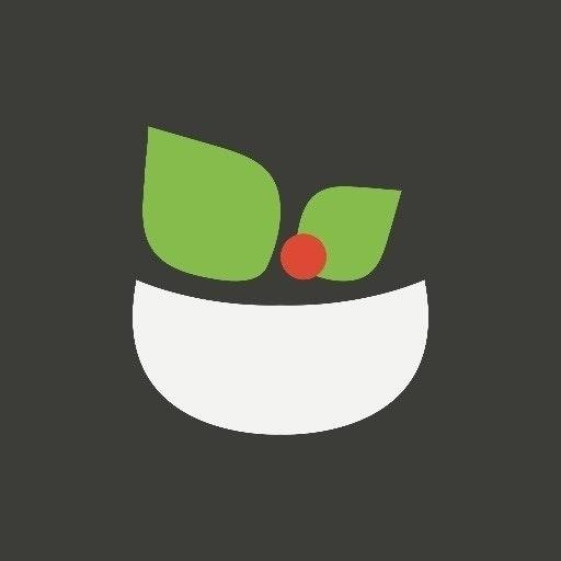 Startup Salad
