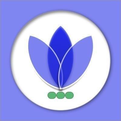 Blue Vine Solutions