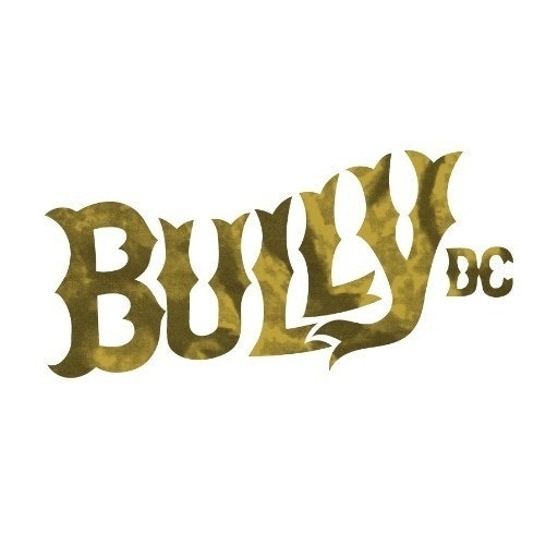 Bully Design Co.