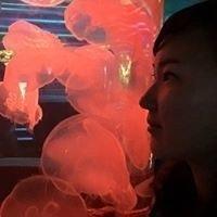 Rebekah Kwon