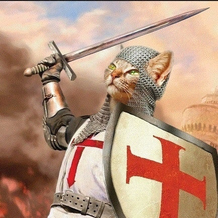 CRUSADER CAT