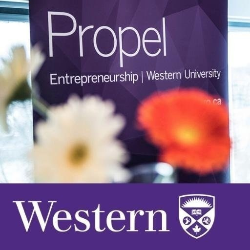 Propel at WesternU