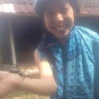 Gia Phua Lihua