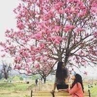 Anuja Manoharan