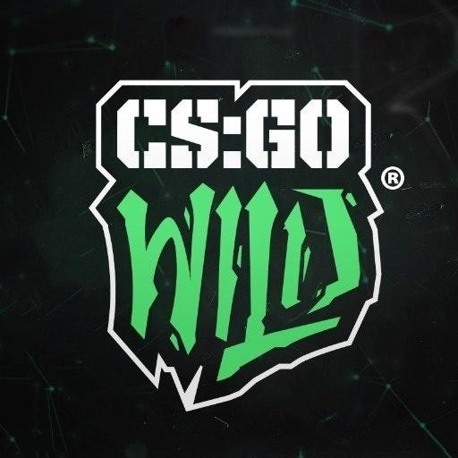 CSGOWild