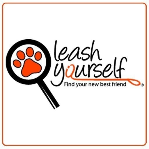 Leash Yourself