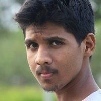 Kaushik Narayanan