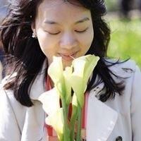 Yina Tsai