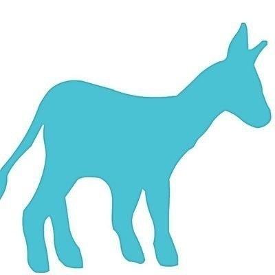 Donkeys Date