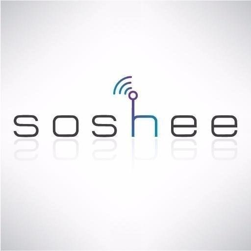 Soshee Robot Dog