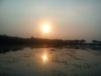Nil Akash