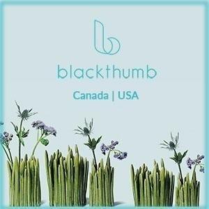 Blackthumb Decor