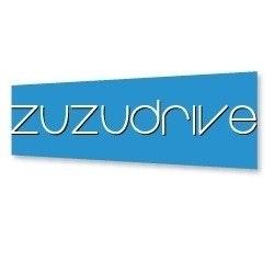 zuzudrive.com
