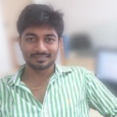 Bharathi P