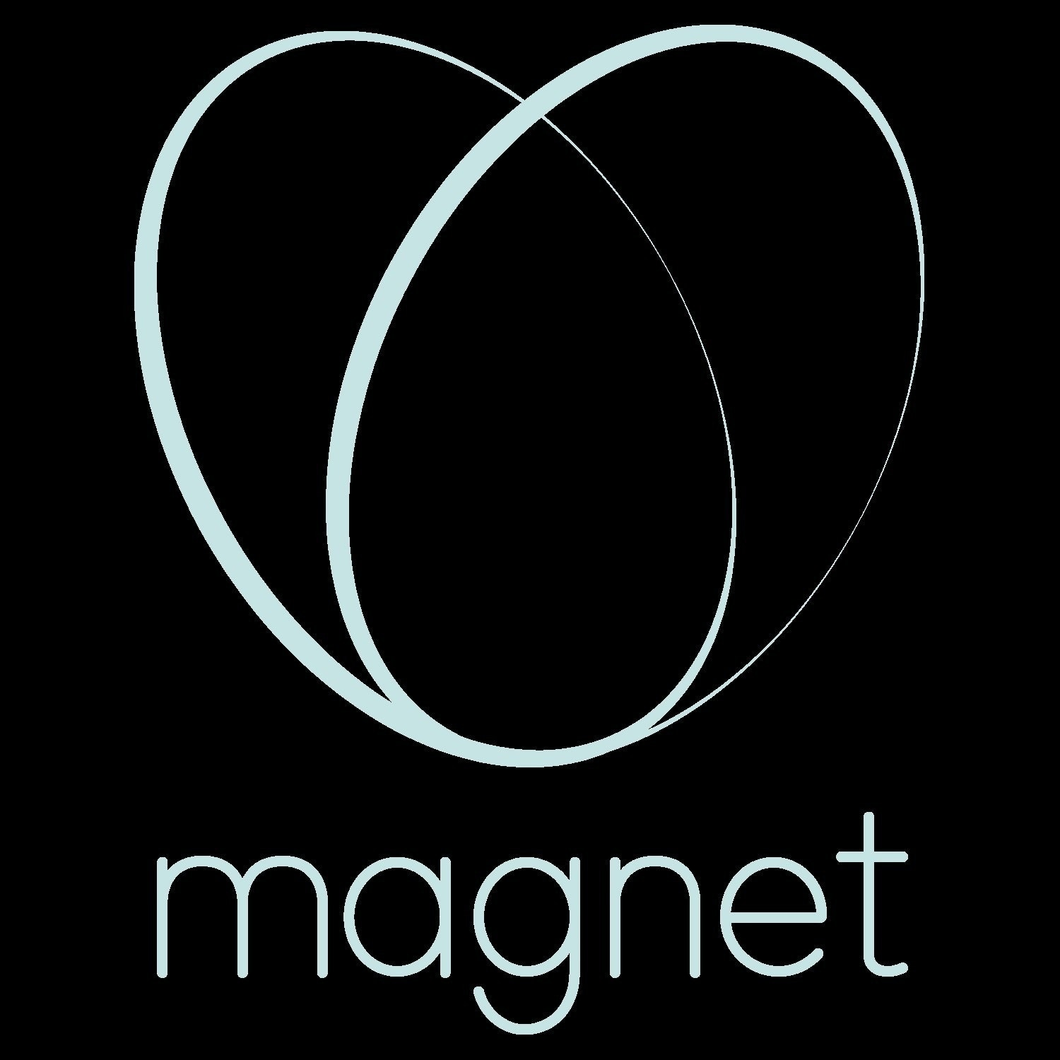 Use Magnet