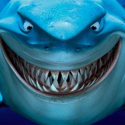Just a Crypto Shark