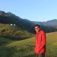 Pulkit Kumar