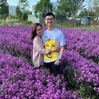 Hồ Lê Chí Hiếu